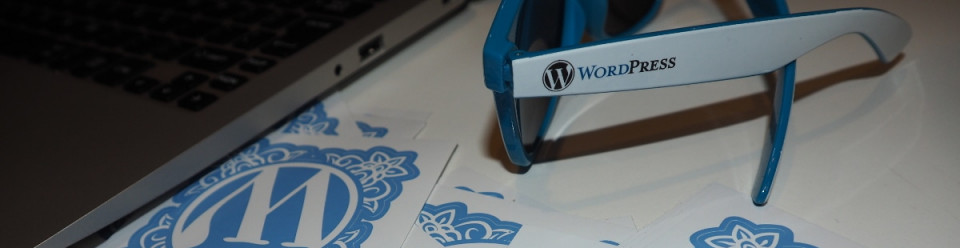 wordpress-sunglasses-laptop